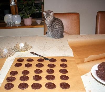 Bispindens fristelser, choko-småkage – ca. 100 stk.