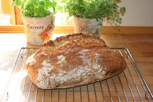 Emil's brød – langtidshævet brød, 1 stort