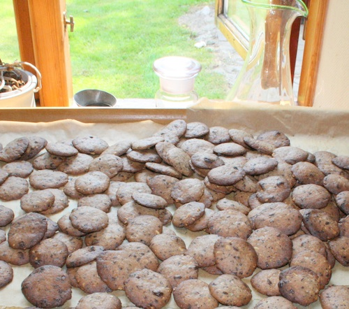 Specier med chokolade og nødder, 175 stk.